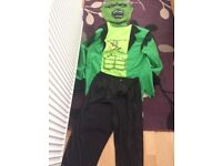 Hulk costume (adults)