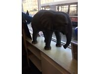 Baby elephant statue free local delivery