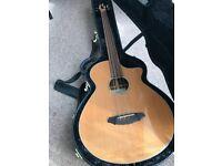 Breedlove ABJ25 / CM4-FL electro-acoustic fretless bass guitar with hard case