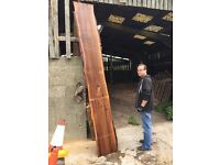 Elm boards burr timber wood turning blanks oak ash yew maple you name it