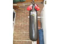 Everlast Punch Bag + wall attachment & Londale Boxing Gloves