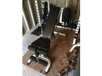 Bench by Body Solid - Incline / Decline, with preacher curl attachment
