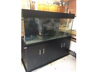 5x2x2ft marine tropical fish tank in brand new condition (delivery/installation)