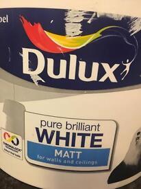 White Matt paint