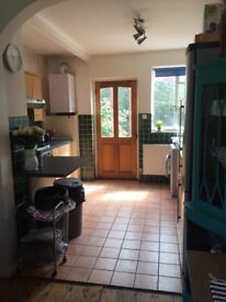 House share in Putney/Roehampton available to rent 1st July