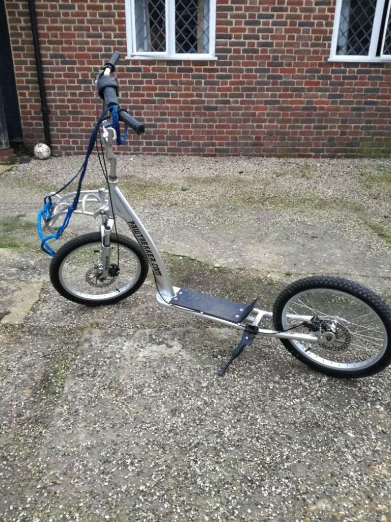Pawtrekker Dog Scooter Front / Rear Disc Brake model | in Basingstoke,  Hampshire | Gumtree