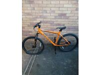 Mens Carerra Mountain Bike
