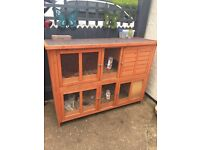 2 rabbits, double hutch, run, bedding and accessories