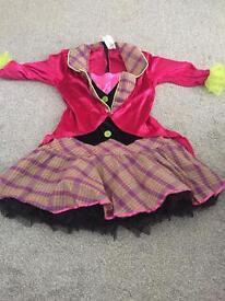 Mad Hatter fancy dress costume