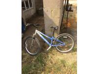 Raleigh free ride LX ladies bike