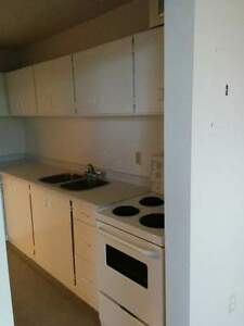 Conveniently Located 1 & 2 Bedroom Suites! Kawartha Lakes Peterborough Area image 2