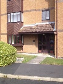 Cambridge studio flat - fully furnished beautiful self contained flat in Cherry Hinton