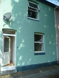 3 BED TERRACED HOUSE, CENTRAL NEWTON ABBOT