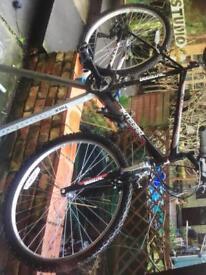 Adult mans bike needs tlc
