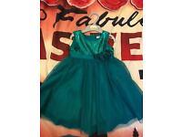 Brand new ladybird dress size 18-24 months