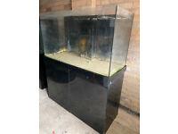 4ft Black Gloss Tank marine tropical fish tank aquarium with setup (Drivery installation )