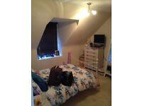 Prime location - Crown - Very Large bedroom