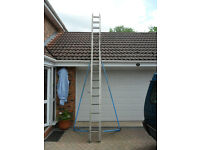 Youngs 17 rung double ladder