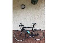 Bianchi Camaleonte Road Bike