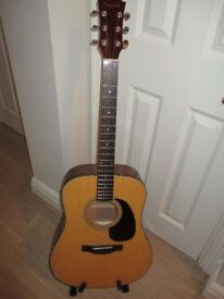 Farida D8NA steel strung acoustic guitar