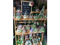 Closed and open terrariums with bonsai trees ,cacti and flowers .