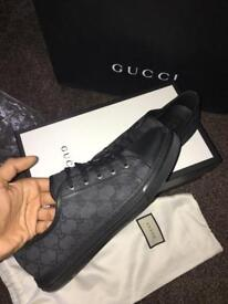 Gucci Trainers Brand New BARGAIN