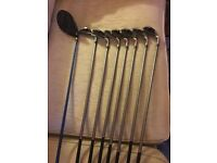 King Cobra Golf irons and Driver
