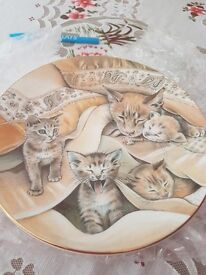 Royal worcester cats and kittens