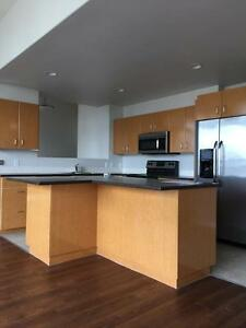1 bedroom penthouse in downtown Calgary