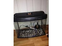 "25"" bow front fish tanks x2"