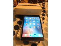 Immaculate iPad mini 16GB Wifi Model