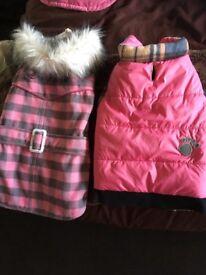 Various dog items