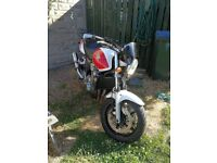 53 plate Honda Cb1300, great condition!