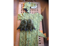 Kids Crocodile Costume 4-7. Good quality and good condition.