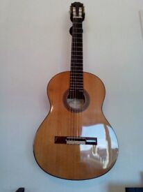 AS NEW Fransisco Domingo Solid Wood Classical Guitar