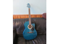 Brunswick steel string guitar