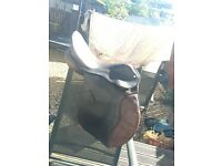 "17.5"" Brown Leather Saddle"