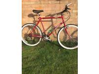 Gents Bike Chrome-alloy Oversized Frame