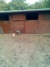 Stables to rent 2