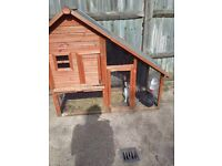 2 rabbits 1x black 1x white 3months old same sex hutch and accessories included