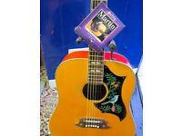 Terada Hummingbird Acoustic Guitar --Made in Japan 1970's