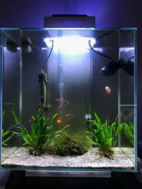 Fluval Edge 46l Aquarium