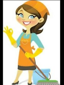 Domestic cleaner available Hove