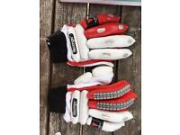 Cricket gloves and pads
