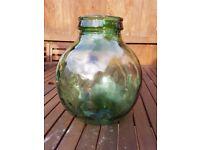 Green Viresa vintage bottle garden
