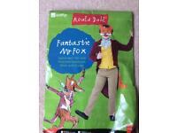Fantastic Mr Fox costume