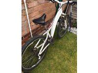 Saracen xtort jump bike/downhill/mountainbike/bmx