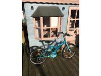 B.Twin girls bike