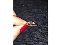 9ct Gold, Garnet & Diamond Ring