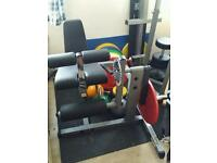 Body Solid Semi Professional Leg Extention and Hamstring Curl Uses Olympic Weights